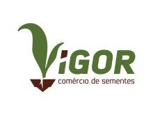 Criação Logomarca Vigor Sementes